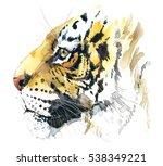 tiger watercolor illustration | Shutterstock . vector #538349221