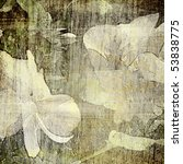 art floral grunge graphic... | Shutterstock . vector #53838775