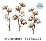 beautiful hand drawn vector... | Shutterstock .eps vector #538431175