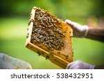 collects honey from the hive | Shutterstock . vector #538432951