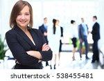 portrait of a business woman... | Shutterstock . vector #538455481