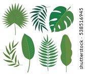 vector set of tropical leaves.... | Shutterstock .eps vector #538516945