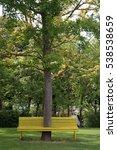 tree trough a bench   Shutterstock . vector #538538659
