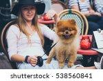 pretty young fashion woman... | Shutterstock . vector #538560841