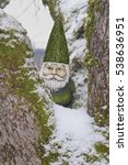 Closeup Of Gnome In Tree With...