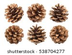 pine cones isolated on a white... | Shutterstock . vector #538704277