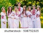 midsummer. a group of young... | Shutterstock . vector #538752325