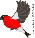 flying bullfinch isolated on... | Shutterstock .eps vector #538784149