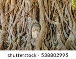 Buddha Head Entwined In Tree...