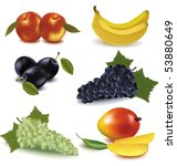 peaches  plums  banana  green... | Shutterstock .eps vector #53880649