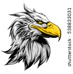 strong eagle head  | Shutterstock .eps vector #538833031