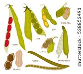 legumes pods set in flat style. ... | Shutterstock .eps vector #538853491