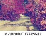 road trip adventures.nature and ... | Shutterstock . vector #538890259