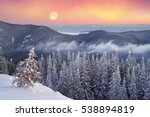 after the storm a strong frost... | Shutterstock . vector #538894819