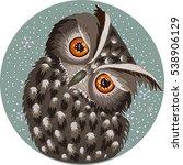 Cold Owl  Eagle Owl Bird...