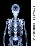 human skeleton under the x rays.... | Shutterstock . vector #53894176