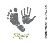 vector hand drawn footprint... | Shutterstock .eps vector #538962421
