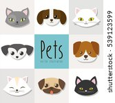 dogs and cats pet related...   Shutterstock .eps vector #539123599