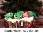 Baby In Elf Costume Lays In A...