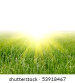 green grass and sun light | Shutterstock . vector #53918467