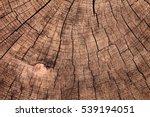 Texture Of Tree Stump Vintage...