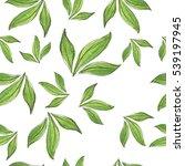 seamless pattern with green tea ... | Shutterstock . vector #539197945