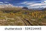 Panoramic Landscape View of Golden Larches and Distant Mount Assiniboine on Great Autumn Hiking Trail in Banff National Park, Rocky Mountains, Alberta, Canada