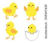 set of cute little chickens in... | Shutterstock . vector #539347639