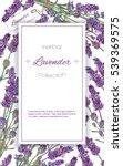vector lavender flower elegant... | Shutterstock .eps vector #539369575
