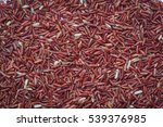 red rice background | Shutterstock . vector #539376985