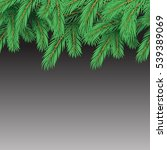 Green Spruce Branches Seamless...