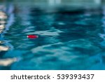 mini petal in the water | Shutterstock . vector #539393437