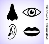 collection of body parts   nose ... | Shutterstock .eps vector #539403451