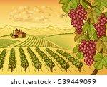 vineyard valley landscape | Shutterstock . vector #539449099