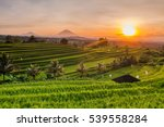 rice terraces in mountains at... | Shutterstock . vector #539558284
