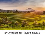 Rice Terraces In Mountains At...