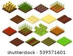 farm set isometric basic... | Shutterstock .eps vector #539571601