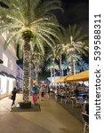 miami beach  florida   december ... | Shutterstock . vector #539588311