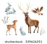Stock photo watercolor deer with fawn rabbits birds isolated on white background wild forest animals set 539626351