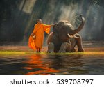 elephant and monk  surin... | Shutterstock . vector #539708797