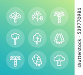 trees line icons set  palm  fir ... | Shutterstock .eps vector #539770981