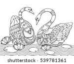 swan coloring book for adults... | Shutterstock .eps vector #539781361
