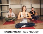 group of people making yoga...   Shutterstock . vector #539789059