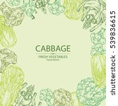 background with cabbage ... | Shutterstock .eps vector #539836615