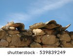 blue sky | Shutterstock . vector #539839249