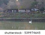 clear image of hida folk village | Shutterstock . vector #539974645