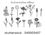 set of hand drawn silhouettes... | Shutterstock .eps vector #540005407