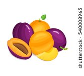 composition of juicy plums and... | Shutterstock .eps vector #540008965