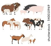 farm animall family collection. ... | Shutterstock .eps vector #540010969