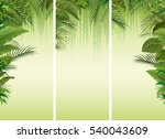 set of three tropical forest... | Shutterstock .eps vector #540043609